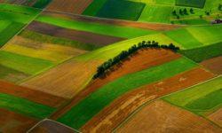 Sabor usvojio Zakon o poljoprivrednom zemljištu
