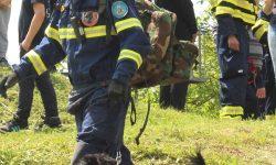Združena vježba članica vatrogasne zajednice Općine Orle