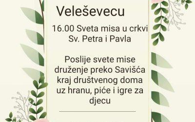 Petrovo u Veleševecu