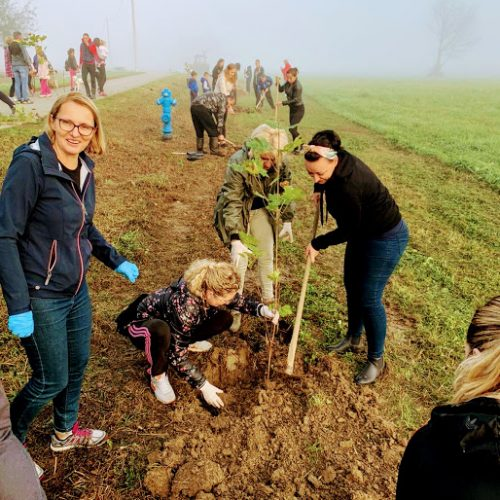 """Održana ekološka akcija """"Zasadi drvo, ne budi panj"""""""